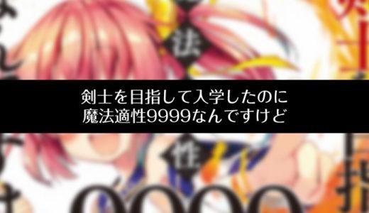 「剣士を目指して入学したのに魔法適性9999なんですけど」レビュー感想。チート設定・キャラ萌え好きにおすすめ